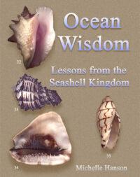 Ocean Wisdom book cover